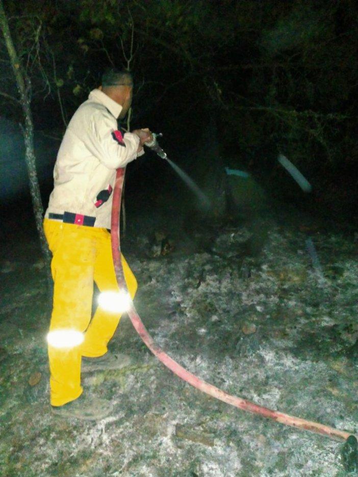 Samsun'da Küçük Çaplı Örtü Yangını Söndürüldü