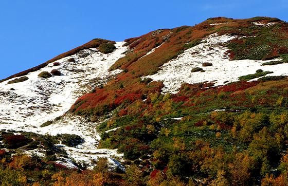 Borçka Haberleri: Karagölde sonbahar güzelliği 57