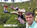 Çaykur'un Hayde Çaya Bakalım kampanyası Fotoğraf ödülleri verildi